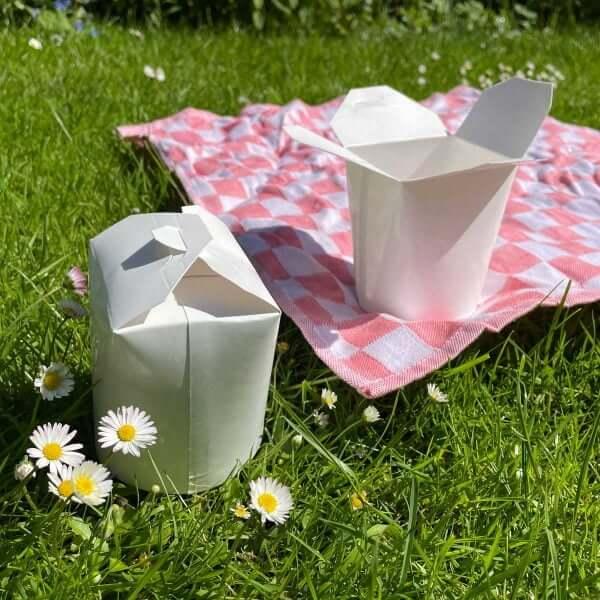 Klein bakje voor picknick box van karton