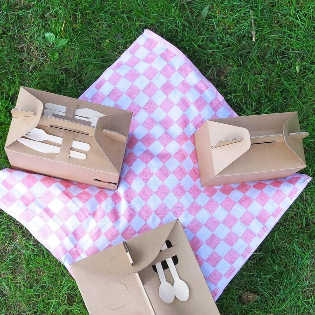 Picknick doosjes van karton